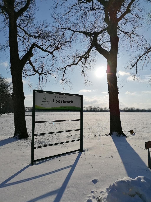 Loosbroek Foto: Caroline Lunenburg  © mooibernheze