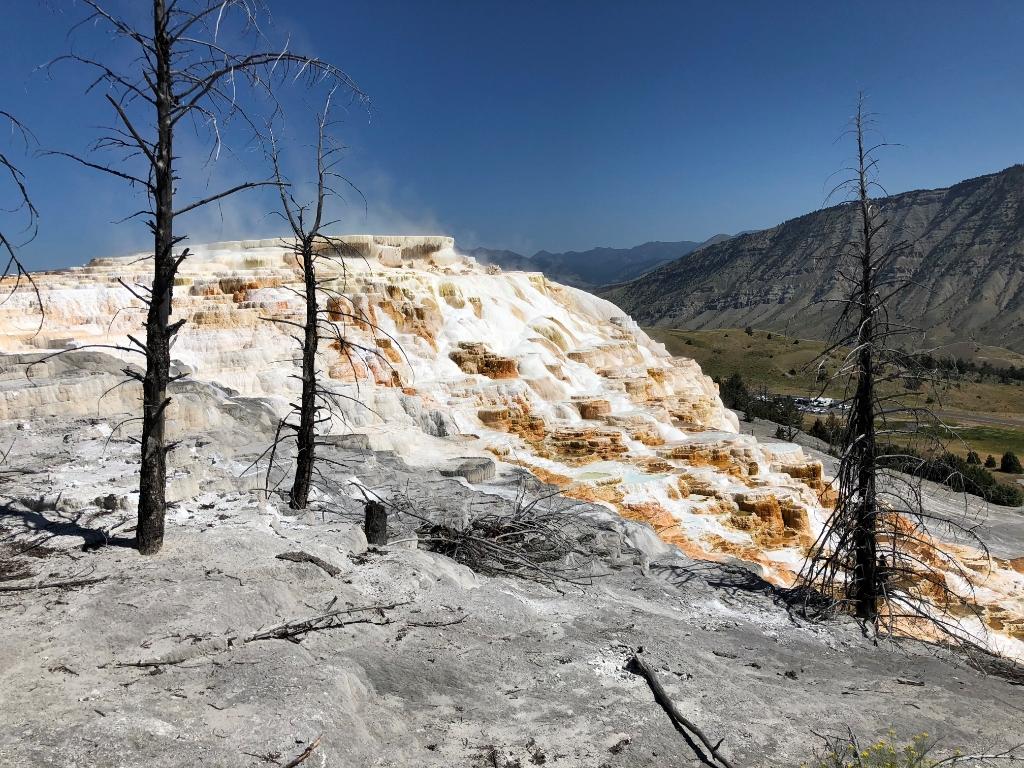 Yellowstone  © mooibernheze