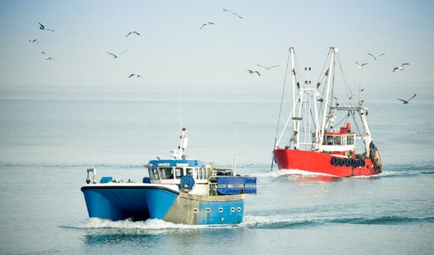 Het Brexit-geld voor Flevoland is vooral om de visserij bij Urk te steunen. (Foto: Adobe Stock/Steve Mann)
