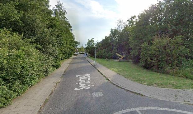 De straat Sprietzeil in Noorderplassen (Foto: Google Maps)