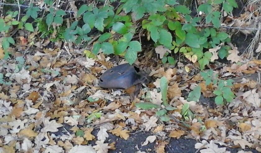 'De wandelaar' stuitte op de Spinolaberg in Halsteren op een 'bijzondere' vondst.