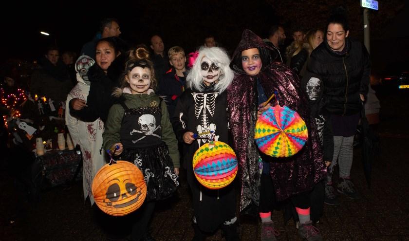 Er worden weer veel kinderen met verlichte lampions verwacht die daarmee in stoet langs versierde huizen en tuinen trekken.