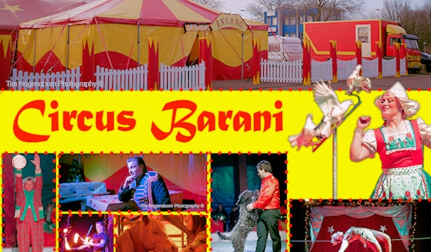 <p>Circus Barani</p>