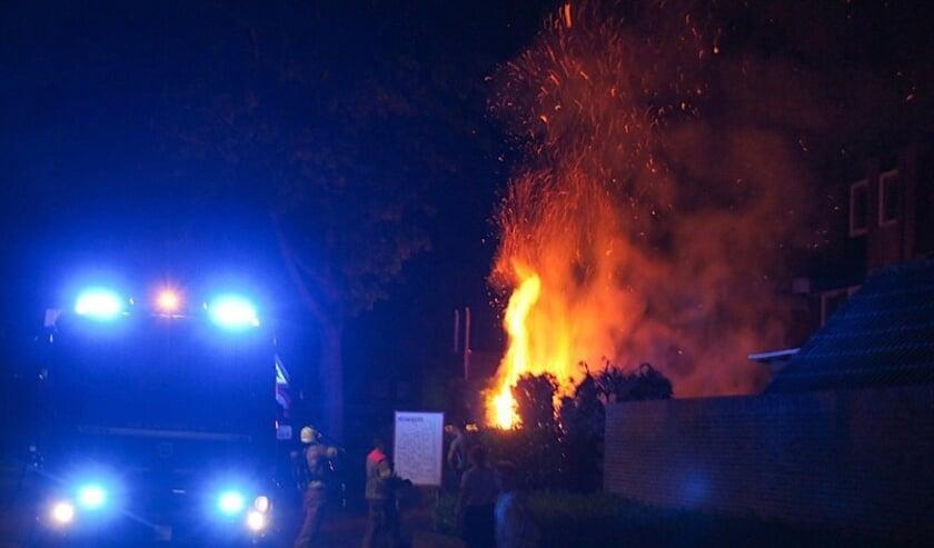 Nachtelijke brand in een coniferenhaag aan de Tulp in Hoogerheide.