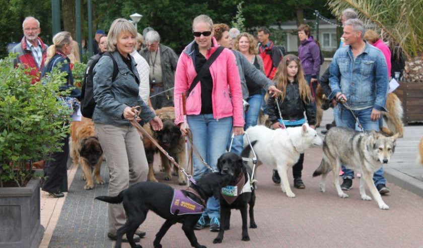 Een eerdere editie van Walk of the Dogs