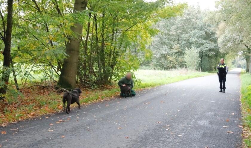 Bijtgrage honden zorgden voor consternatie in de Zevenhutten in Cuijk.