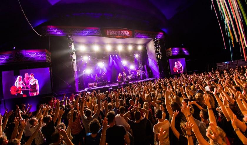 Wat wil de festivalbezoeker nu echt? Dat was wat de organisatie zich dit jaar afvroeg. (foto: FestyLand)