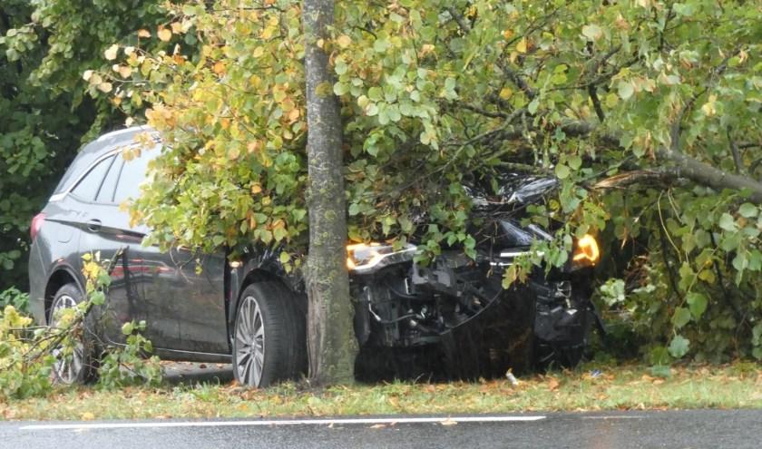 Auto rijdt boom uit de grond op John F. Kennedybaan. (Foto: Gabor Heeres / Foto Mallo)