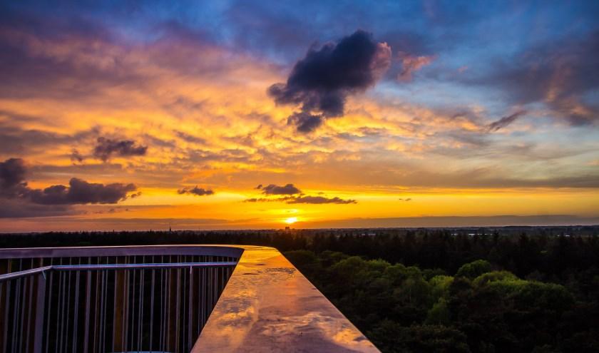 Foto van de week. Vanaf de uitkijktoren in Herperduin. (Paul Scheffers)