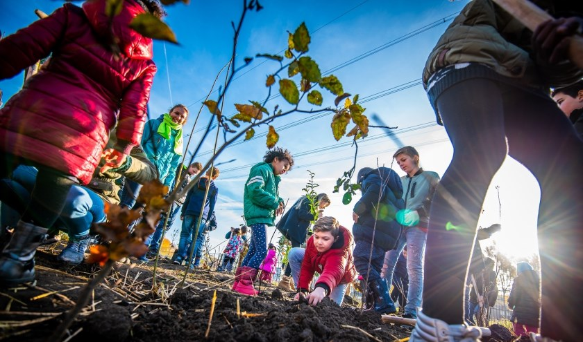 Leerlingen van Basisschool Sint Jozef in Lithoijen planten donderdag 14 november een Tiny Forest.