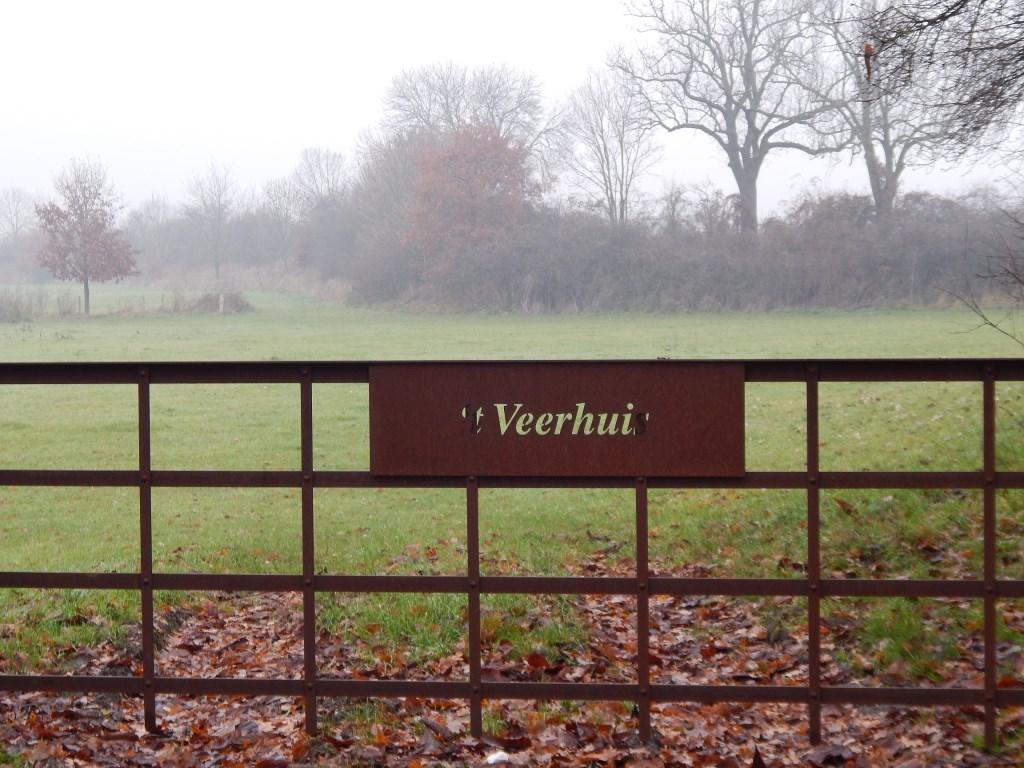 Weidehek nabij 't Veerhuis.  © Kliknieuws De Maas Driehoek
