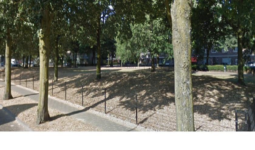 Het parkje van het Kardinaal de Jongplein. (Foto: Google Maps)