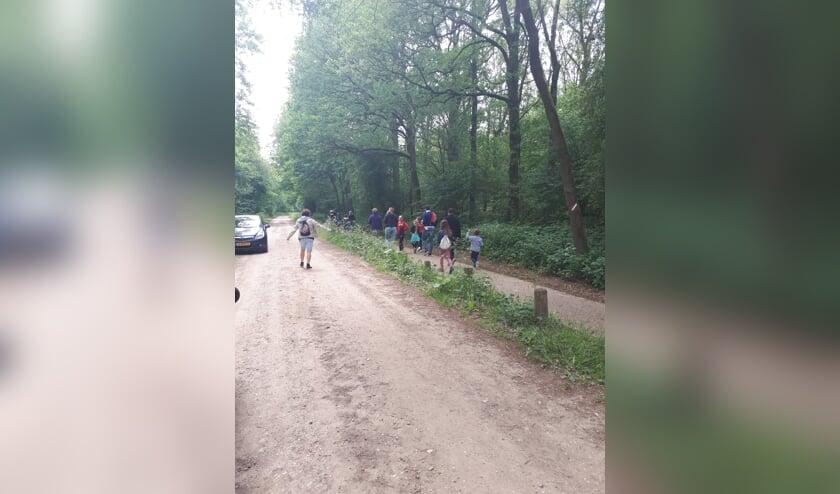 Doe ook mee met de Wandel4daagse in Vierlingsbeek!