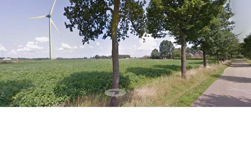 Vanaf Dorshout (Foto's: Maarten van Lankvelt).