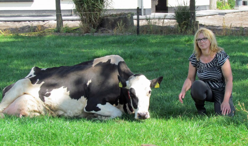 Petra Baltussen van boerderij De Velderhoeve in Landhorst is een heuse hit op YouTube en Facebook.