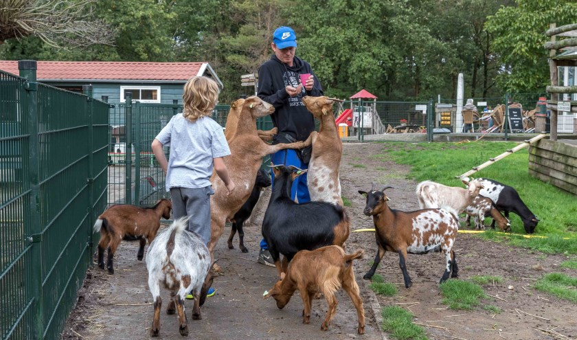 Krijgt de Cuijkse wijk Heeswijkse Kampen een kinderboerderij?