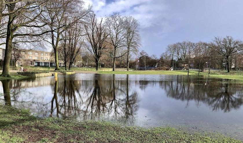 De nieuwe vijver in het Julianapark waar onder andere Veghel in Hout wordt gehouden.