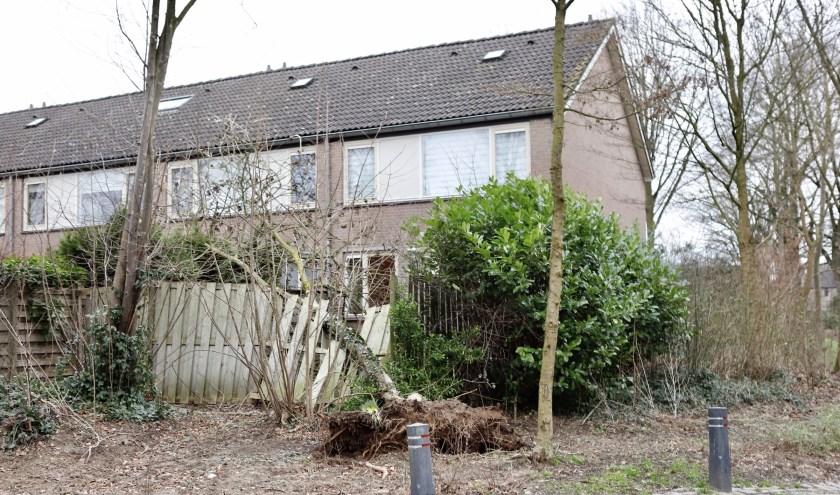 Een boom vernielde een schutting in Cuijk.