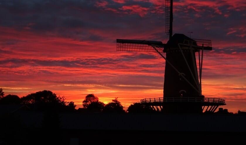 Foto van de week in Megen. (Ruud van Breda)