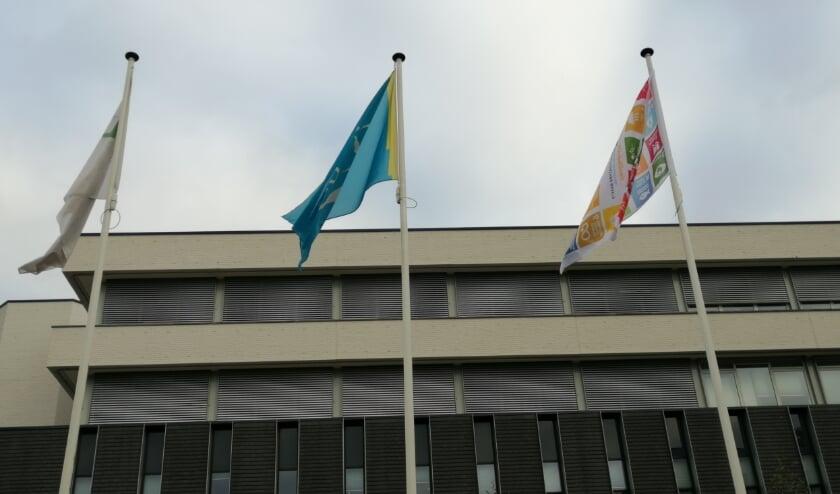 <p>Het hijsen van de Global Goals vlag bij het Osse gemeentehuis.</p>