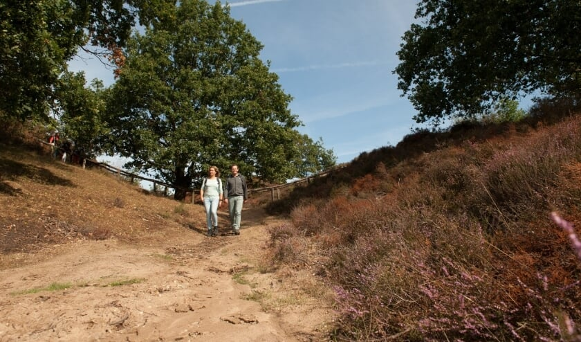 Onverharde paden zijn een lust voor de wandelaar; je stapt letterlijk in en door het landschap.