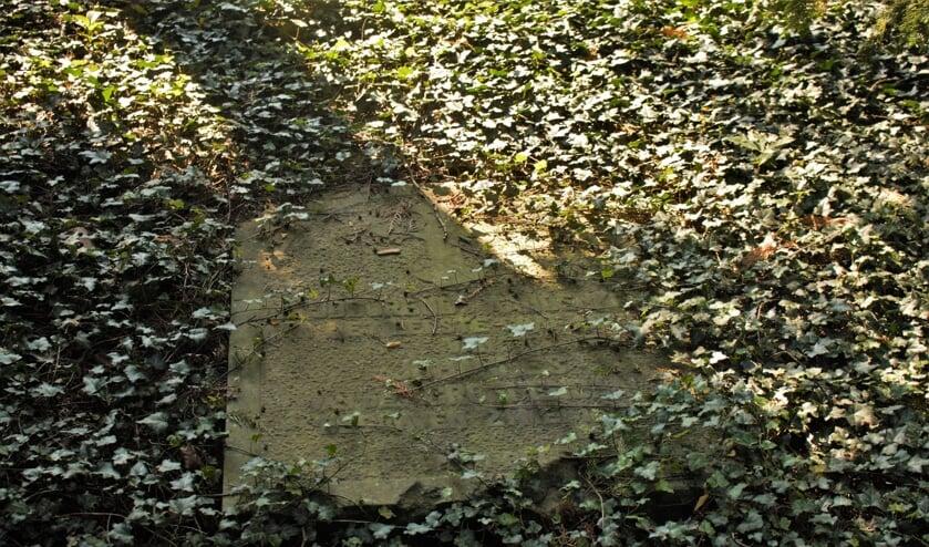 <p>Het oudste graf dat nu nog te vinden is op begraafplaats Orthen, is dat van Johannes Groenendaal, de eerste katholiek die hier begraven is.</p>