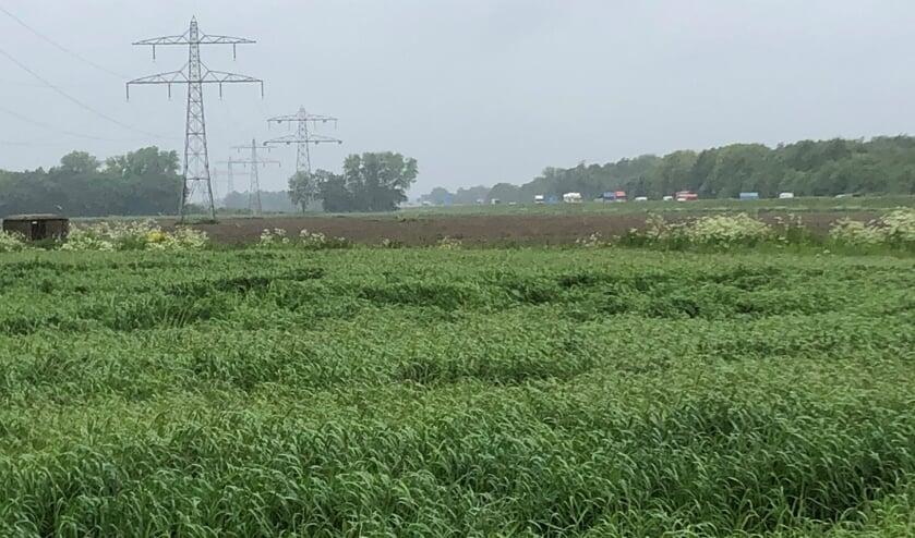 <p>De gemeenteraad van Boxmeer blijft verdeeld over de aanleg van windmolens, bijvoorbeeld in het Boxmeers Broek nabij de A73.</p>