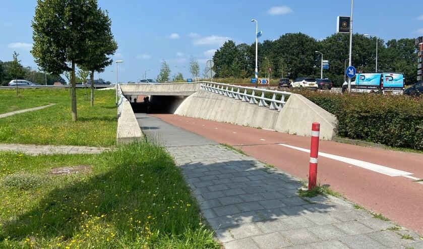<p>De tunnel aan de Bitswijk zou er over een tijdje zomaar heel wat kleurrijker uit kunnen zien.</p>