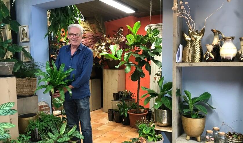 <p>Giel Tuns stelt ook speciale plantenpakketten samen die de lucht zuiveren en voor een betere atmosfeer op de thuiswerkplek zorgen.</p>