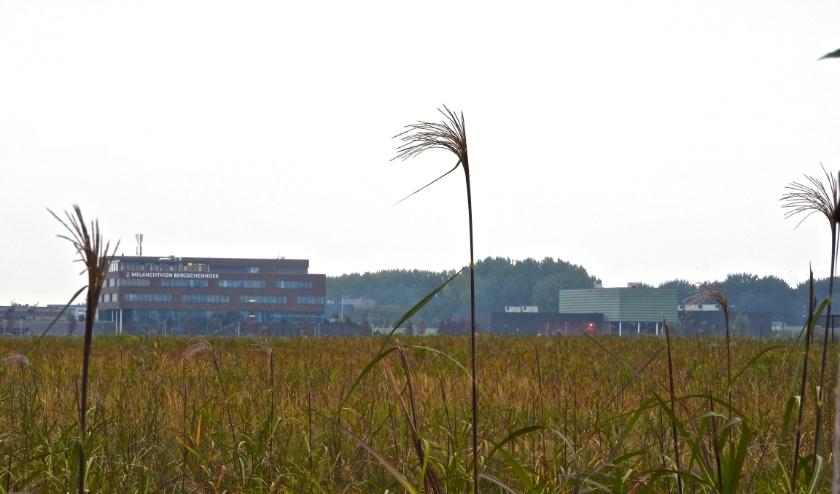 Wilderszijde zal een duurzame en toekomstbestendige woonwijk worden.