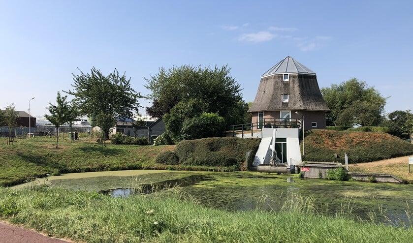 De oude molen aan de Molenlaan in Pijnacker. (Foto: Denise Quik)