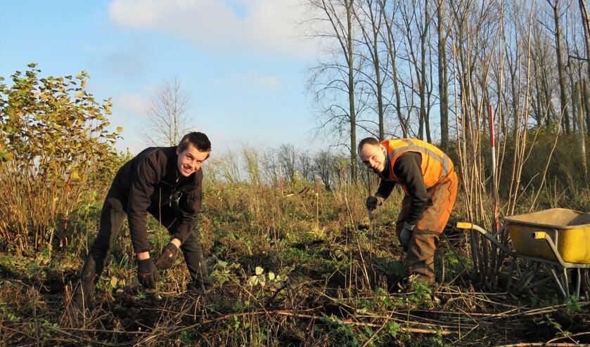 De aannemer heeft twee plantploegen aan het werk in het Lage Bergse Bos. Elk met een eigen kraan en twee planters. (Foto: PR)