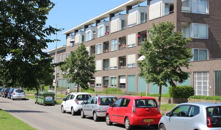 In Meerpolder zijn meerdere soorten sociale huurwoningen.