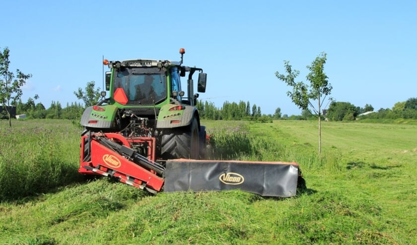 <p>Gedurende bijna een jaar is het gemaaide gras gecomposteerd.</p>