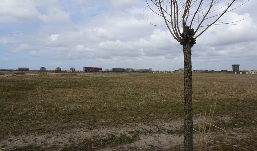 <p>Wilderszijde, nu nog braakliggend terrein, maakt de tongen los in de gemeenteraad.</p>