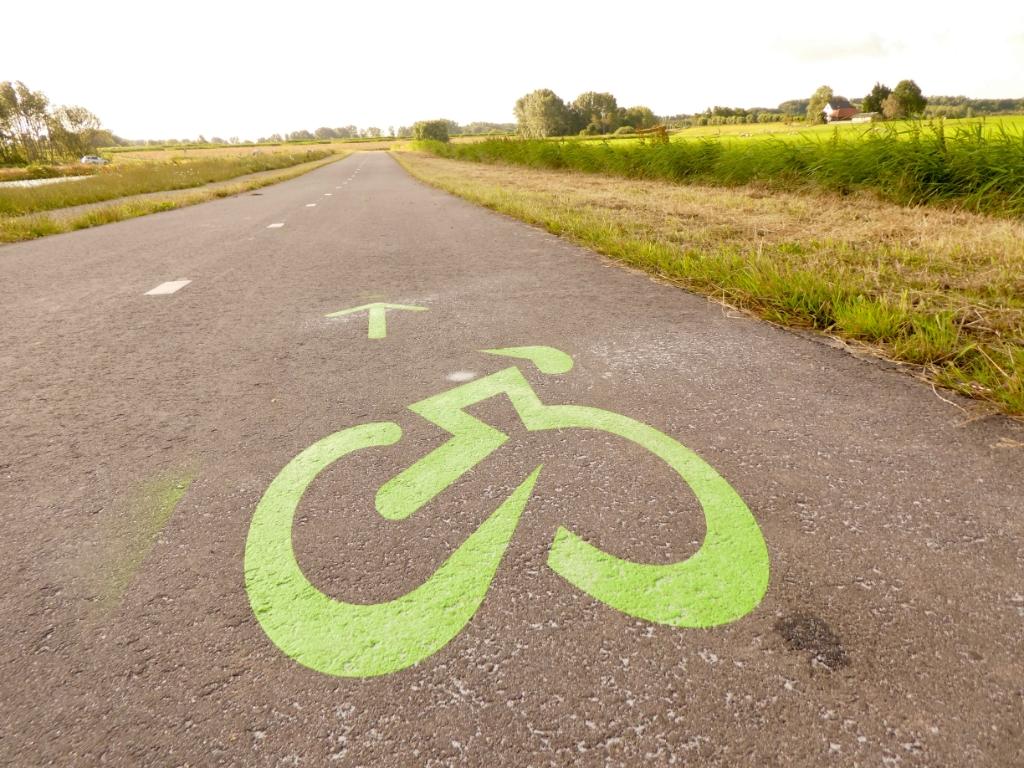 De WielerRotte is te herkennen aan de groene markeringen op het wegdek.  © hartvanlansingerland