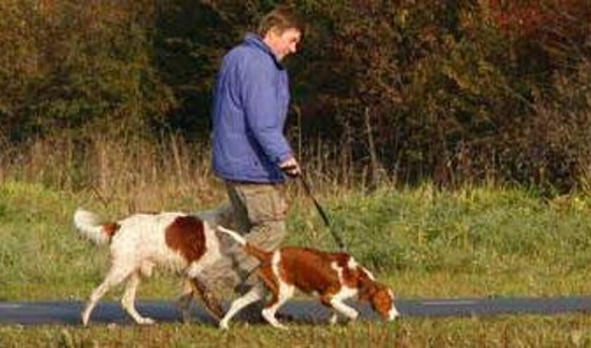 In de toekomst zullen er nog meer maatregelen volgen voor het hondenbeleid bij de Rottemeren. (Foto: PR)