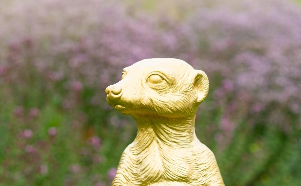 Marcel maakte deze foto van de wisseltrofee Het Gouden Stokstaartje in de Vlinderhof deze zomer. Marcel Leicher © Van Dijk Grafimedia BV