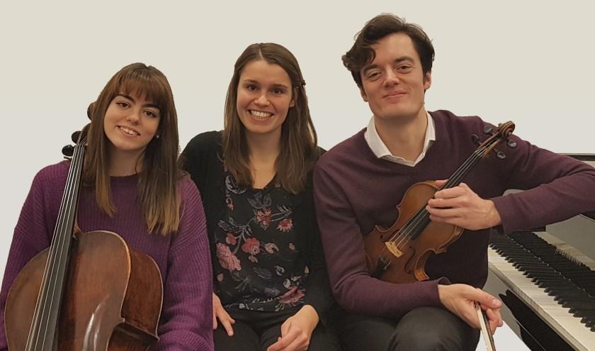 Laurens Trio.