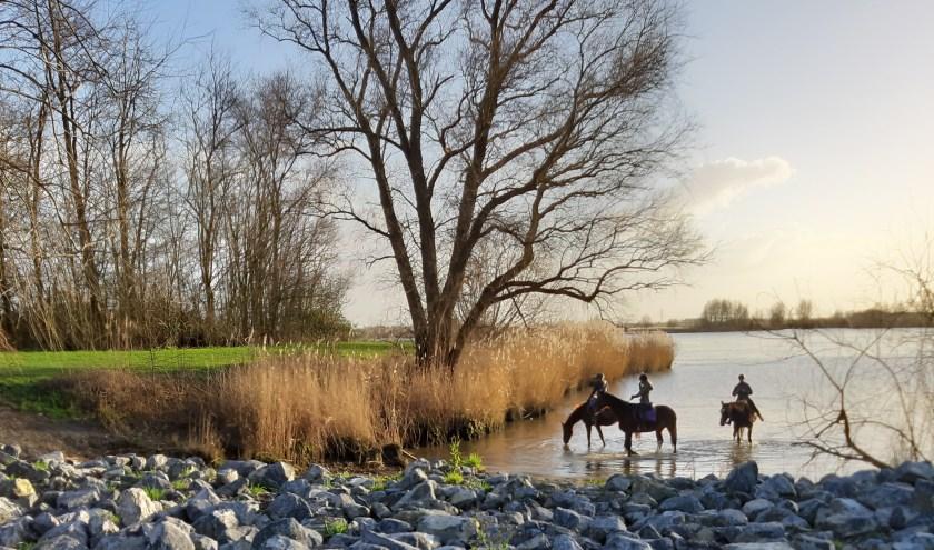 (foto: B. van den Heuvel)