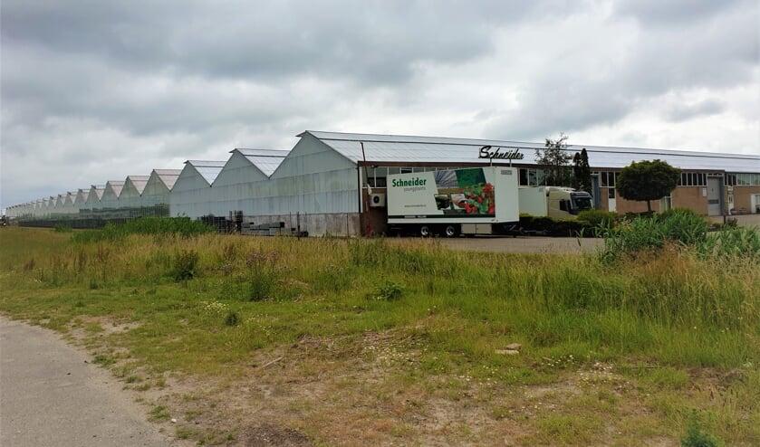 Schneider Youngplants is nu nog gevestigd aan de Voorweg