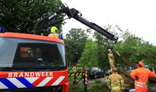 Op de Groen van Prinstererweg kwam een gevallen boom op twee auto's terecht (foto Dennis van Wingerden)