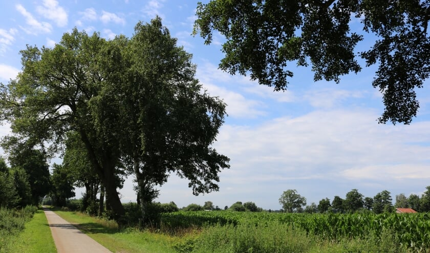RIJSSEN - Het gebied tussen Ligtenbergerdijk, Ploegweg en Schoneveldsdijk waarop de gemeente het oog heeft laten vallen.
