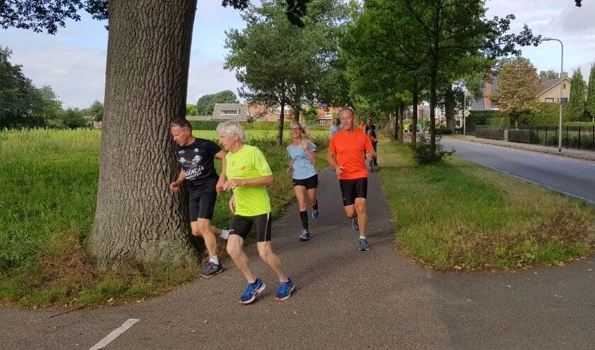 <p>Oefenlopers op het nieuwe parcours van de Engelse Mijlenloop van Haaksbergen.&nbsp;</p>