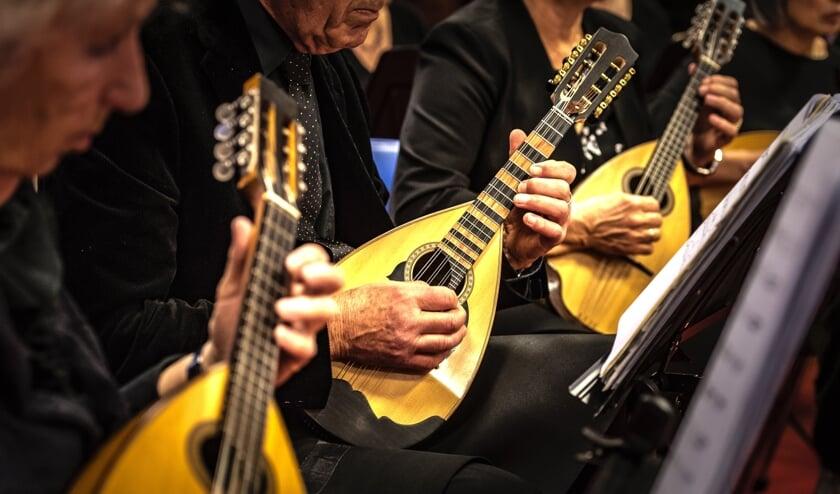 <p>TMGO leidt na 99 jaar nog steeds mandoline-spelers op. (Foto: Sophie Bik)</p>