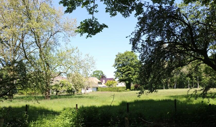 RIJSSEN - Het bouwgebied voor drie woningen achter de Stokmansveldweg gezien vanaf de Korteboslaan.