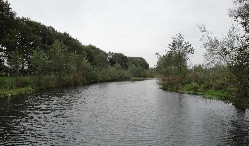 <p>De Regge: bron van leven in de brede zin. Loop mee en ontdek wat er allemaal te vinden is in de natuur rondom deze rivier.</p>