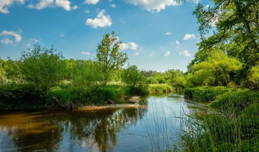 <p>De Dinkel door het Lutterzand: te veel &eacute;n te weinig water kunnen voor uitdagingen zorgen.</p>