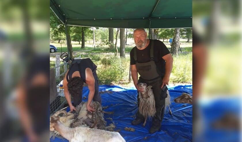 <p>Jos Duurland (rechts) maakt zich zorgen om het voortbestaan van de kudde.</p>