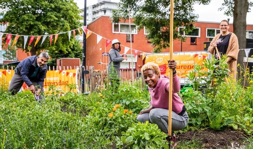 <p>Buren samen aan de slag. Foto: &copy;Oranje Fonds - Remko de Waal.&nbsp;</p>